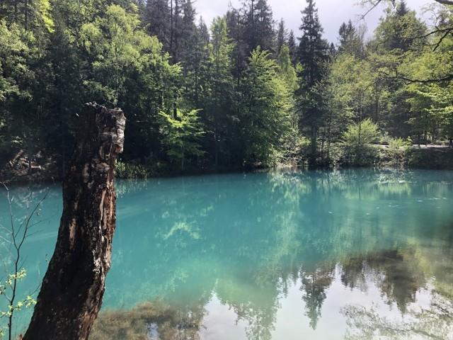 Kolorowe Jeziorka w Rudawach Janowickich warto zobaczyć, bo to prawdziwe cuda natury.