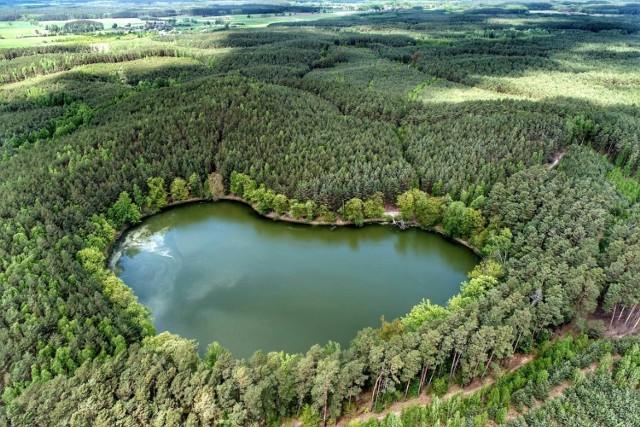 Jezioro Czarne ma kształt serca. Ze Świebodzina to pół godzinki drogi.