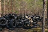 Setki opon w lesie 30 kilometrów od Gubina! Ich zutylizowanie kosztować będzie 20 tys. zł! Leśniczy szukają sprawców