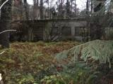 To dawny ośrodek kolonijny na Głębokim. Turyści twierdzą, że to skandal, aby na rogatkach Głębokiego straszył taki obiekt