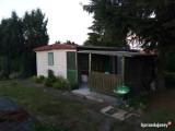 Tak wyglądają ogródki działkowe na sprzedaż we Włocławku. Oferty w serwisie OLX