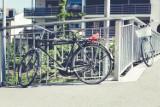 QUIZ. Jeździsz rowerem po mieście? A znasz przepisy?