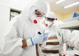 Raport koronawirus. Znane są najnowsze dane dotyczące epidemii koronawirusa w powiecie wągrowieckim