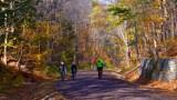Najpiękniejsze trasy rowerowe w Zielonej Górze i regionie. Tu widoki zapierają dech, nogi i rower niosą ku przygodzie! - lista szlaków