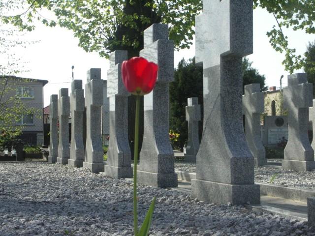 Historia cmentarza przy ul. Raszkowskiej w Krotoszynie zaczyna się na pocz. XX w. Wśród grobowców znaleźć można sporo mogił osób, których imionami dziś są nazwane ulice. Są też osoby wybitnie lub mniej zasłużone dla historii miasta czy nawet kraju.