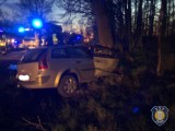 Dwie ofiary wypadku drogowego pod Zdunami ZDJĘCIA