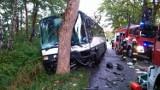 Śmiertelny wypadek na drodze do Łeby. Osobówka uderzyła w autobus [ZDJĘCIA]