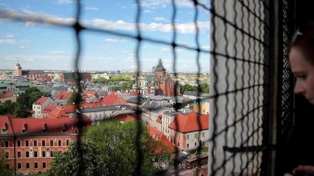 Wawel zajmuje powierzchnie 7040 m², na której mieści się 71 sal wystawowych. Na zwiedzających czekają liczne Komnaty i Apartamenty Królewskie, Skarbiec Koronny i Zbrojownia, Smocza Jama, Wawel Zaginiony oraz Ogrody Królewskie. Z Baszty Sandomierskiej i Dzwonu Zygmunta widać piękną panoramę Krakowa oraz dziedziniec zamku.