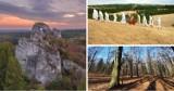Musisz to zobaczyć! Cuda natury w woj. śląskim - TOP 10 miejsc, w których zrelaksujesz się na łonie natury. ZDJĘCIA