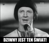 Festiwal Opole 2017 - gdzie się odbędzie? Kielce, Radom a może Toruń? [MEMY]