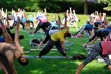 Darmowe treningi, Warszawa. Poćwiczcie jogę, pilates, tańce i fitness na świeżym powietrzu. Oto lista plenerowych zajęć