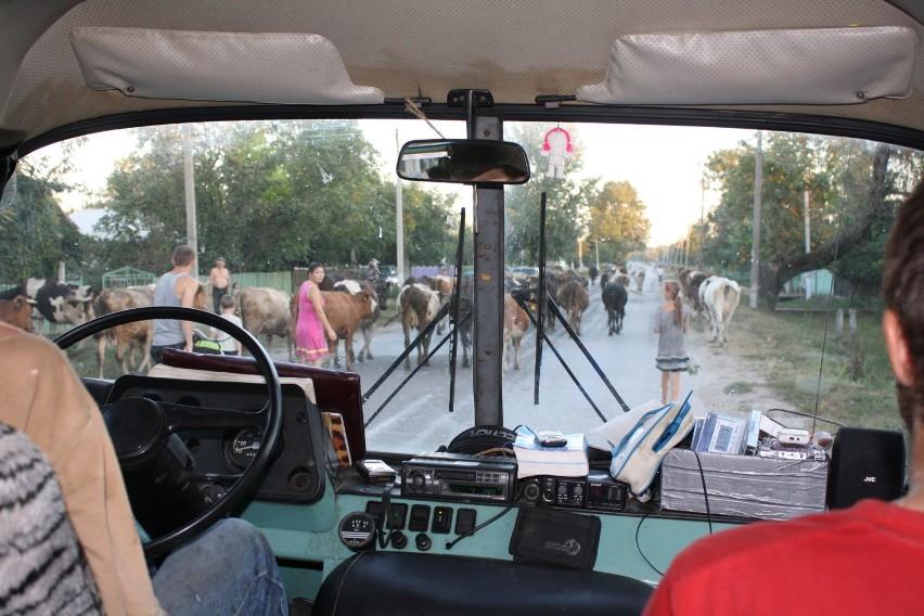 Granica Republiki Naddniestrza z Mołdawią