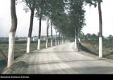 Powiat mikołowski 100 lat temu - zobacz jak wyglądał. W kolorze! Sprawdź budynki, ludzi... Te zdjęcia robią wrażenie!