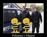 Policja: memy. Policjanci na wesoło...