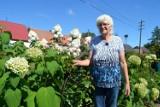 Maria Twardowska z Szamot i jej bajkowy ogród. Czy nie jest tu jak w raju?