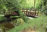 Ogród zgodny ze sztuką Dalekiego Wschodu może powstać także w Polsce