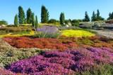 Jesienne barwy zagościły do największego parku skalnego w Europie. Pięknie!
