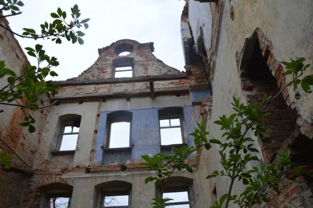 Zarówno zabytkowy pałac w Studzieńcu, jak i okoliczny teren, wymagają gruntownej rewitalizacji.