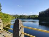 Jezioro Złotnickie jest pełne uroku. Przyjedź tu na spacer! [ZDJĘCIA/MAPA]