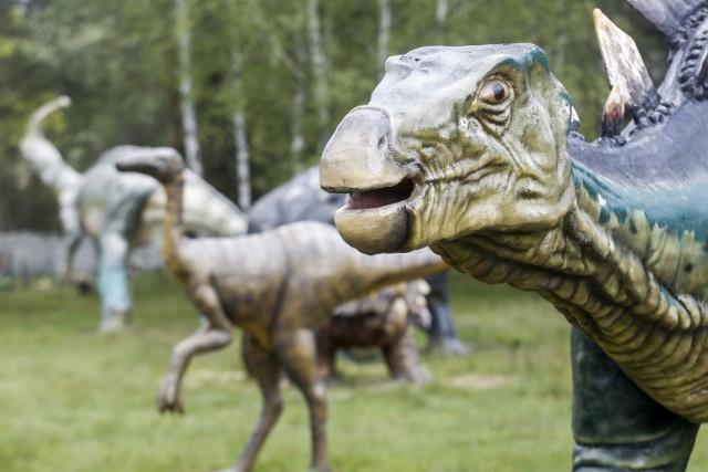 Dinozaury w Kolbuszowej czyli Jurajski Park Brzezóvka.