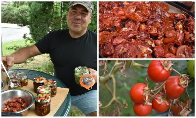 Tomasz Miarecki do suszenia wybiera najbardziej dojrzałe pomidory