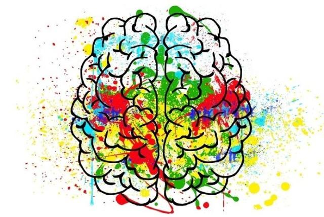 Czy da zwiększyć wydajność naszego umysłu i sprawić, by pracował efektywniej? Przedstawiamy listę najlepszych sposobów na poprawę pamięci.