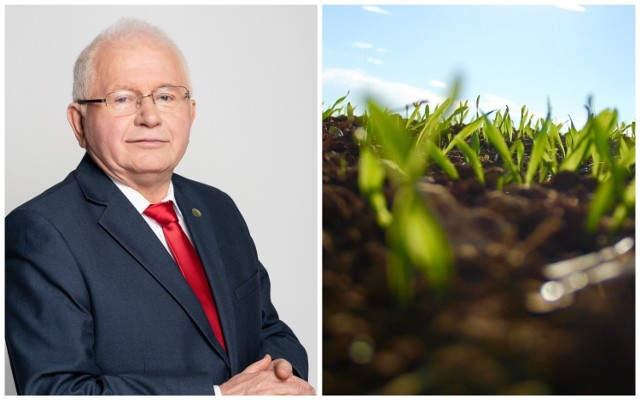 Prof. dr hab. Marek Mrówczyński, dyrektor Instytutu Ochrony Roślin-Państwowego Instytutu Badawczego w Poznaniu