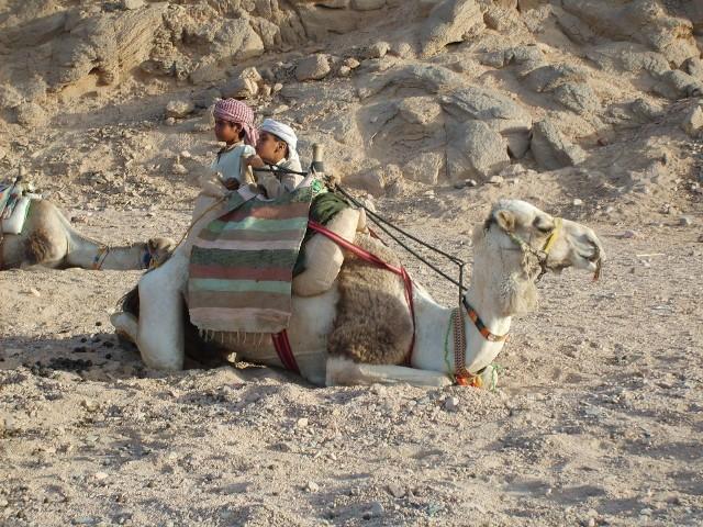 Przekonaj się, kiedy warto lecieć do Hurghady. Pogoda nie spłata ci figla