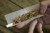 Dwóch mężczyzn zatrzymanych z marihuaną w Zduńskiej Woli