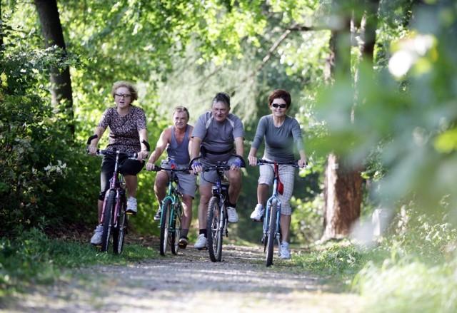 Na terenie Kampinoskiego Parku Narodowego utworzonych jest ponad 360 km szlaków dla pieszych i 200 km ścieżek rowerowych. W czasie przejażdżki warto się na chwilę zatrzymać na jednej z polanek rekreacyjnych.   Czytaj też: Trasy rowerowe pod Warszawą. Gdzie wybrać się na przejażdżkę? [PRZEGLĄD]