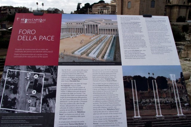 Forum Romanum - zespół zabytków zgrupowanych pomiędzy Koloseum, Kapitolem i Palatynem. Fot.Dorota Michalczak