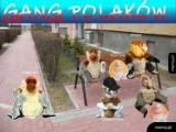 Memy o Polakach i Polsce. Co prawda w wielu aspektach się różnimy, ale te memy zrozumie dosłownie każdy Polak [18.03.2021]