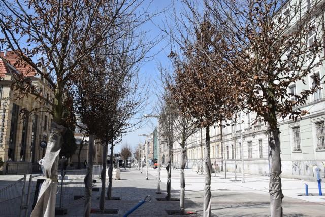 Przebudowa ulicy Dworcowej w Katowicach