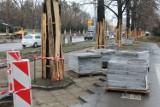 Toruń. Koniec z masowymi wycinkami drzew i niszczeniem zieleni na placach budów?