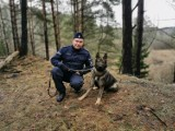 Pies Kafar nowym czworonożnym funkcjonariuszem białostockiej policji (zdjęcia)