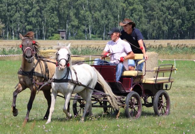 Święta Konia w Stefanowie - PROGRAM