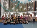 Dzień Kota w przedszkolu w Żarkach Letnisku ZDJĘCIA