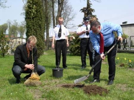 Podczas święta strażaków Jerzy Fijas, burmistrz Brus i Markus Lau, burmistrz z Niemiec posadzili nieopodal remizy w Brusach drzewko przywiezione przez delegację, aby rozwijało się tak jak współpraca pomiędzy gminami. Fot. Maria Sowisło