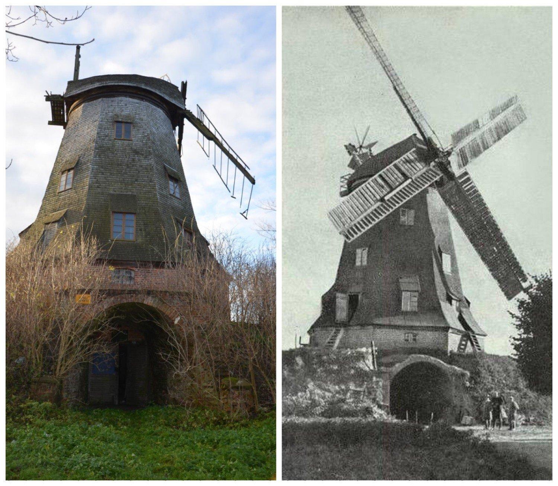 Historia na Żuławach. Zabytkowy holenderski wiatrak z XIX wieku w ...