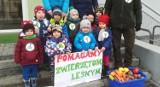 Maluchy z Przedszkola nr 9 w Dąbrowie Górniczej zebrały 43 kg karmy dla leśnych zwierzaków