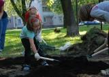 Żolibuh 3.0: Będą sadzić kwiaty na Żoliborzu. Przyłącz się do akcji i pomóż upiększyć miasto!