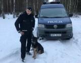 Fiona i Buczuś, policyjne psy z Bydgoszczy, przeszły na zasłużoną emeryturę [zdjęcia]