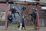 Oberschlesien pomaga psom. Sesja zdjęciowa w ramach akcji PSIjazna Polska [zdjęcia]