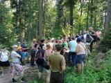 Wypoczywający w Iwoniczu-Zdroju mogą poznać ciekawostki iwonickich lasów. Nadleśnictwo organizuje spacery z leśnikami w roli przewodników