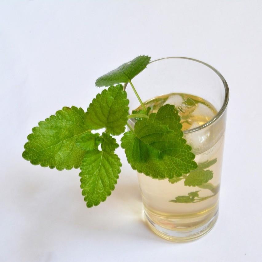 Wspieraj się ziołamiZwiększona produkcja adrenaliny...