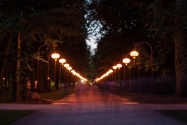 Nocny magiczny spacer po Łazienkach Królewskich. To była wyjątkowa noc [ZDJĘCIA]