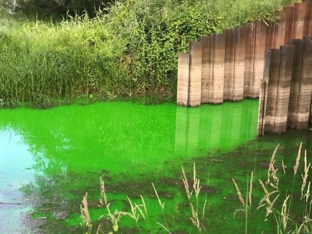 Woda zostanie zabarwiona fluorosceiną, która nie stanowi zagrożenia dla środowiska