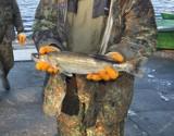Już w niedzielę (26 września) ostatnie zawody wędkarskie na jeziorze Trzesiecko w Szczecinku