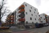 Mieszkania dla studentów w Poznaniu. Ile kosztują najtańsze mieszkania i pokoje do wynajęcia?