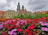 Początek jesieni w Krakowie. Tłumy turystów na Rynku i Wawelu [ZDJĘCIA]